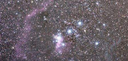 IC2711 Néb de la Mouette