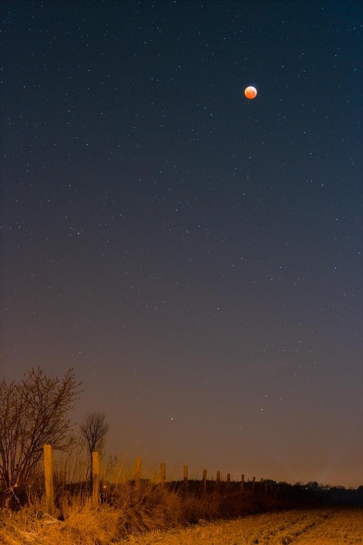 Eclipse lunaire: enfin! 122643-1549668178