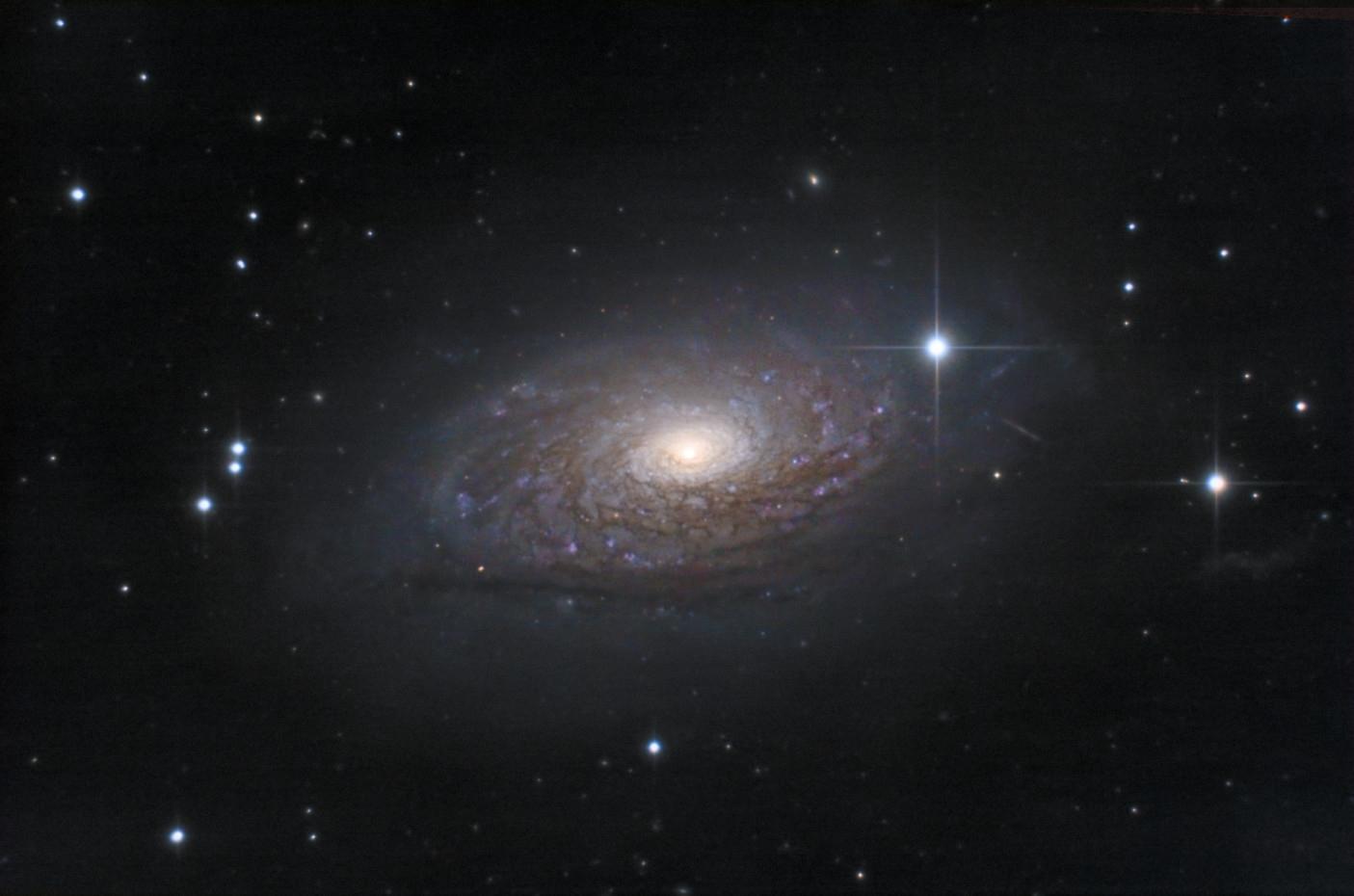 Marathon galactique: m63 m101 ngc3079 ngc3344 ngc4565 122643-1585649480