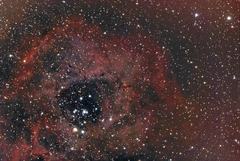 rosette nébula ngc 2238