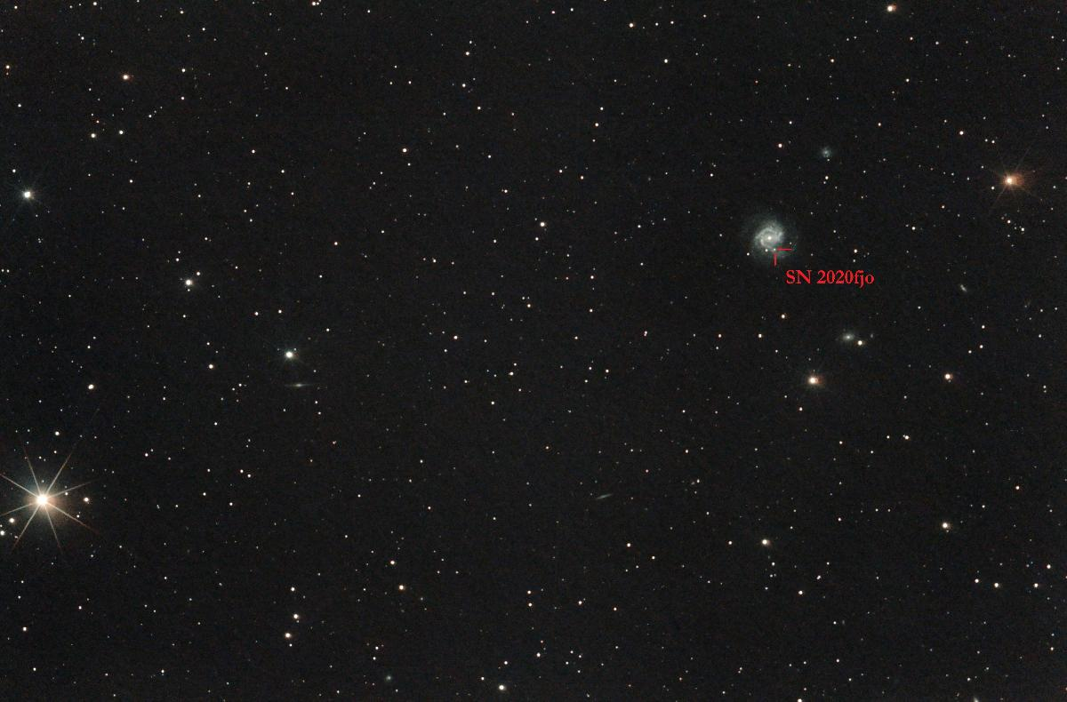 La galaxie de l'enflure et sa 8ème supernova