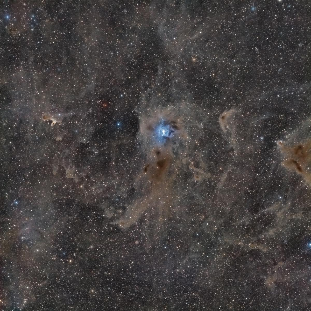 IRIS-NGC7023