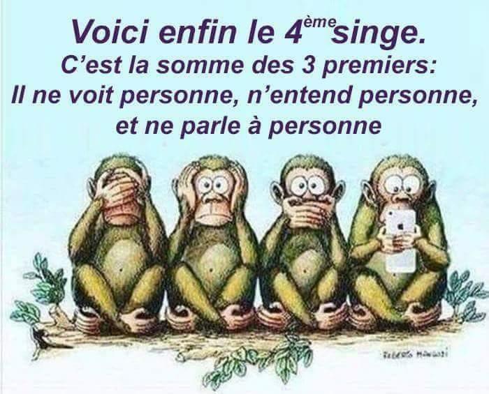 singes4