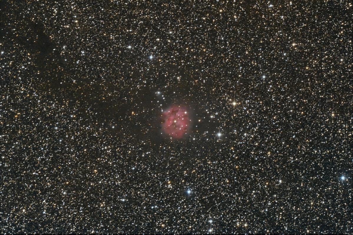 IC 5146: Nébuleuse du Cocon.