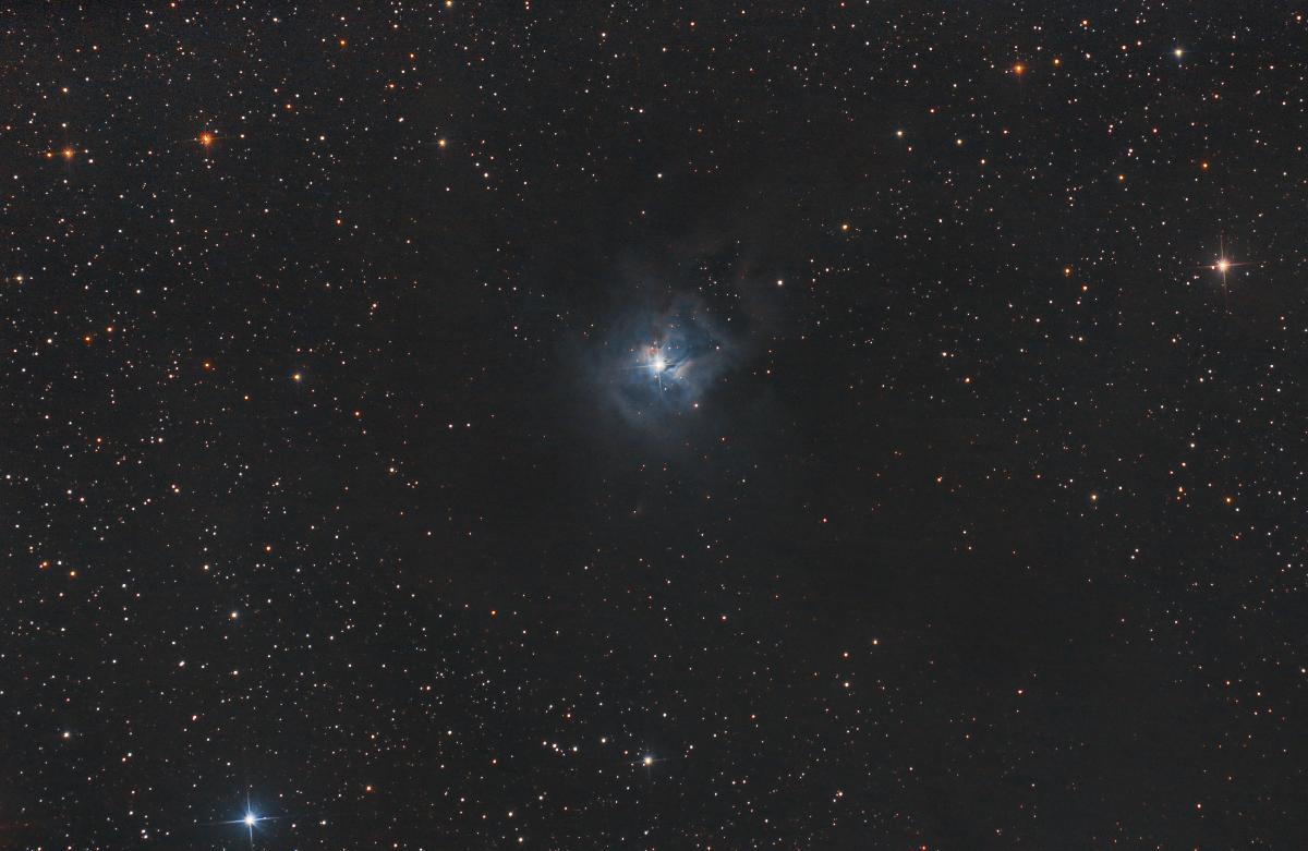Ngc 7023 iris