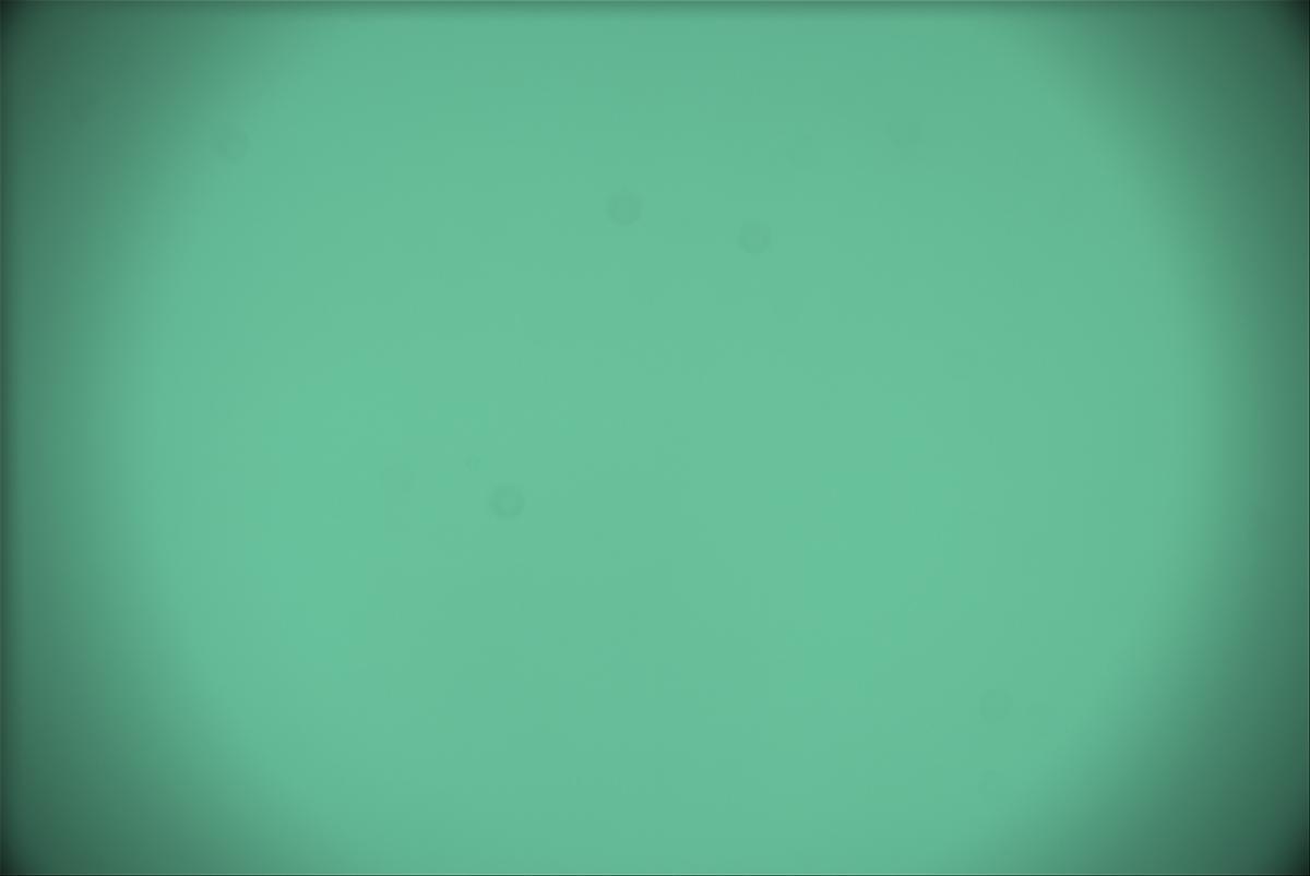 126359-1563118555.jpg