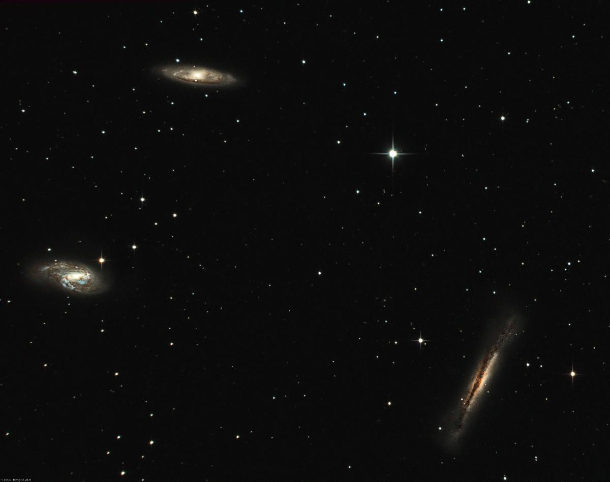 Le trio du Lion (M65, M66 & NGC3628)
