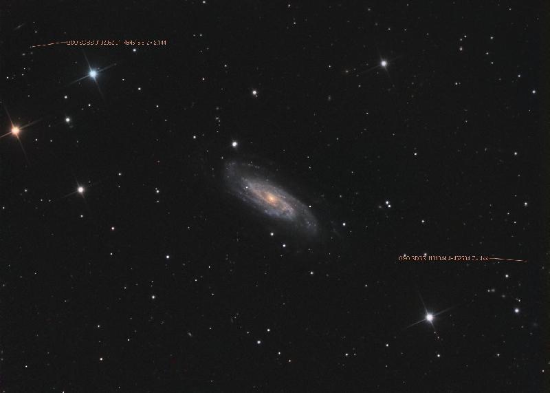 NGC 3198 QSO