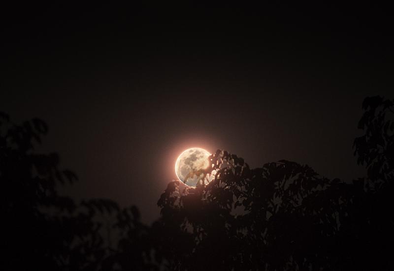 Lever de lune dans le Sang dragon