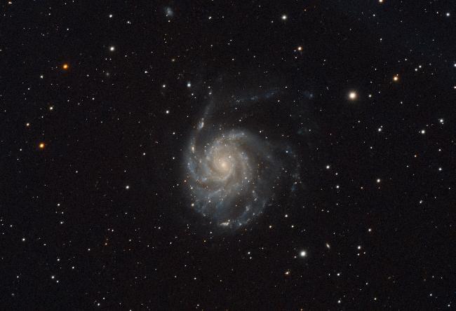 M101 en 2021