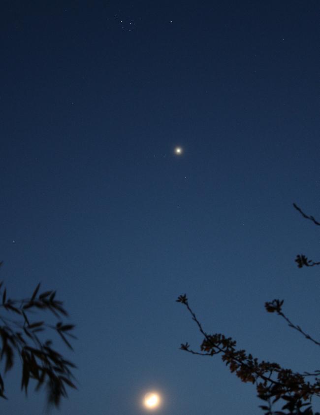 lune venus pleiades
