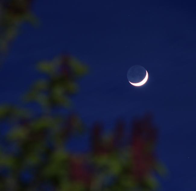 lune cendrée du 15.04.2021