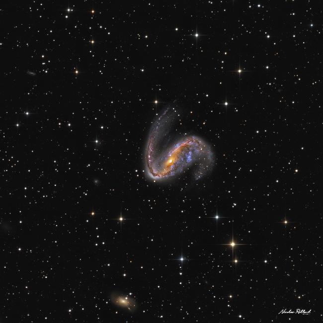 NGC 2442 HaLRGB Crop