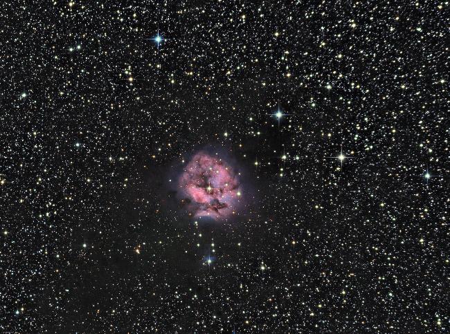 La nébuleuse du Cocon (IC 5146)