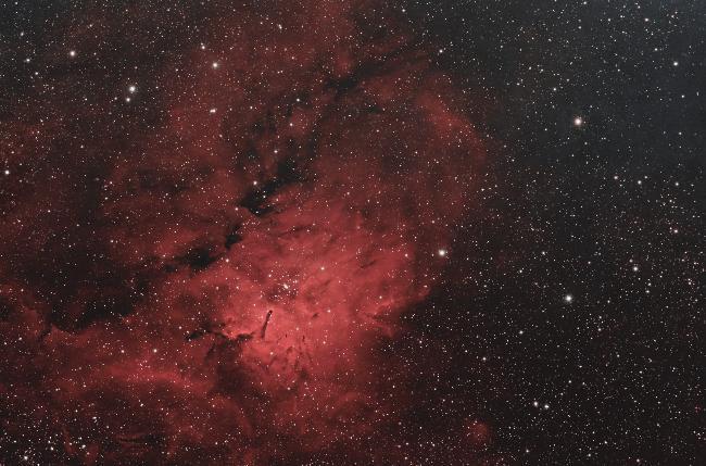 Nébuleuse du Renard NGC6820