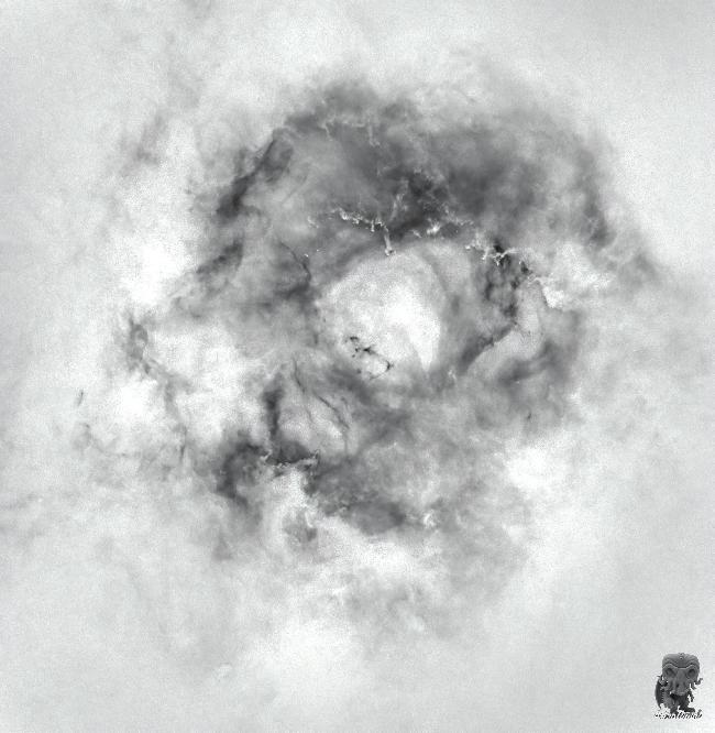 AstroArt autour de la Rosette
