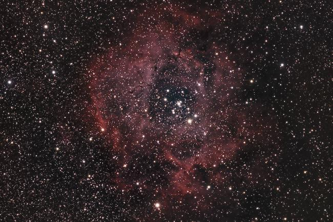 NGC2244 - Nébuleuse de la Rosette