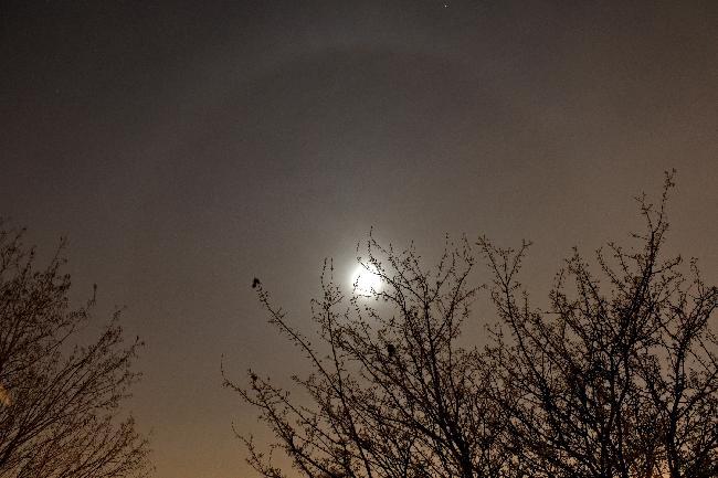 Petit halo lunaire