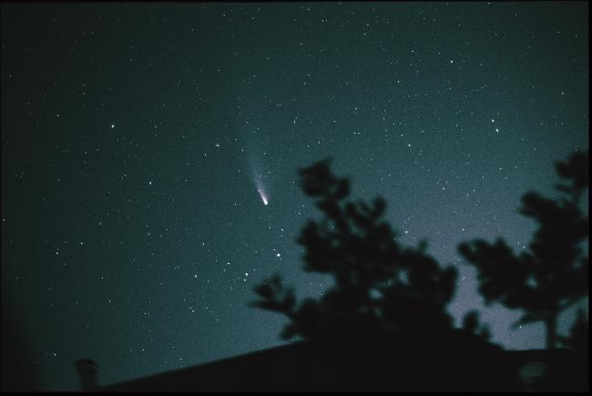 Comete NEOWIZE