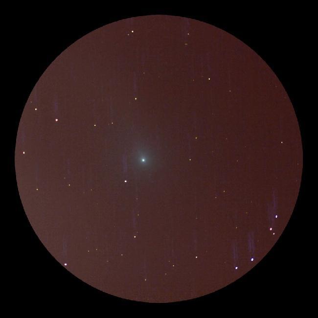 comète C/2018 Y1 Iwamoto