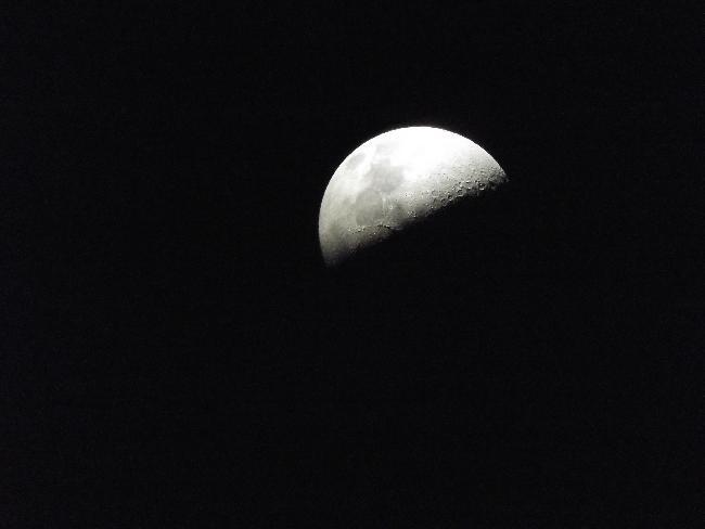 1/2 lune