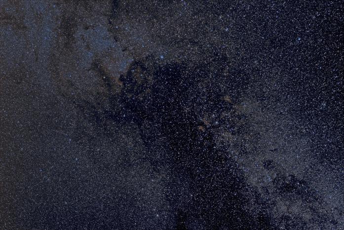 cygne.jpg.b02a544f8e26e892541893a4d521fe8f.jpg