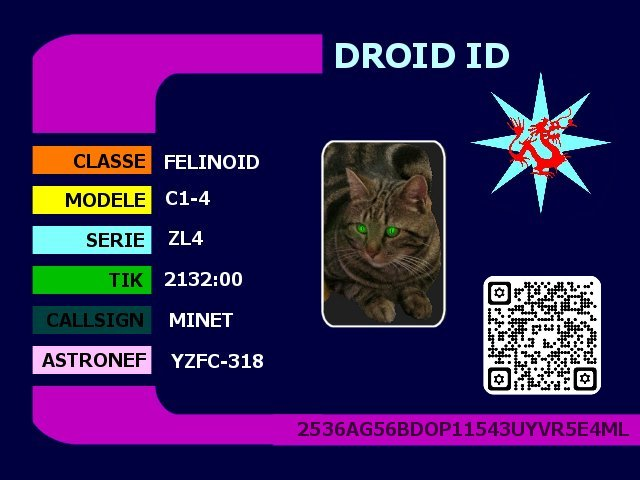 idcard.jpg.abe5cab57a7588f31632dd1944e0564b.jpg