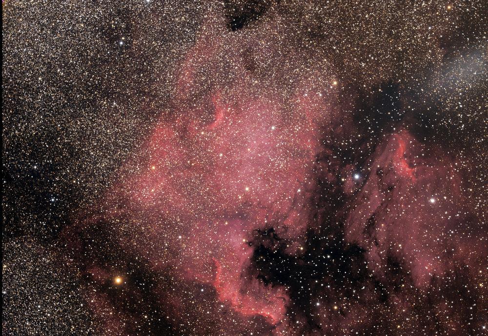 NGC7000_Nébuleuse_de_l'Amérique_du_Nord.jpg