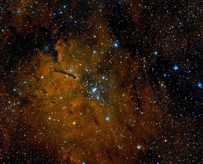 NGC 6823 DSS.jpg