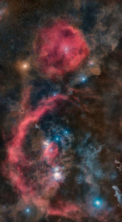 Orion_starless50.thumb.jpg.595848a5800681ca7eef2915bee313ef.jpg
