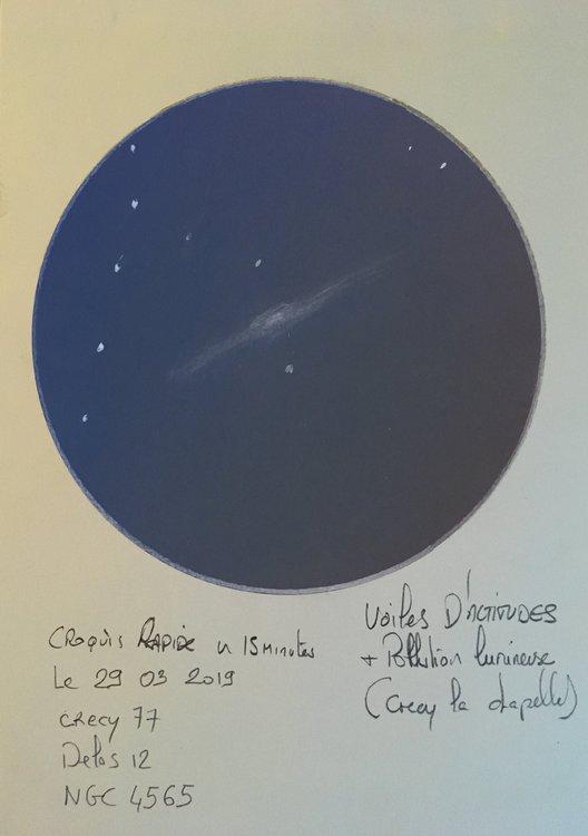 141599083_NGC456529_03_2019.thumb.jpg.06d7c68f130cdf1814d36b39f68bca36.jpg