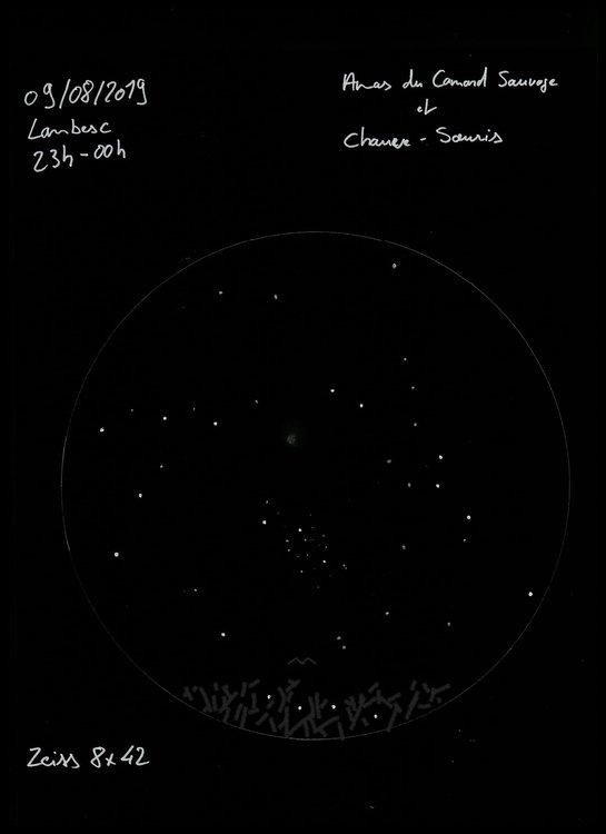 1364951176_Astrodessin-AmasCanard.thumb.jpeg.4e21a0134a84fc7a020d9fc08af95306.jpeg